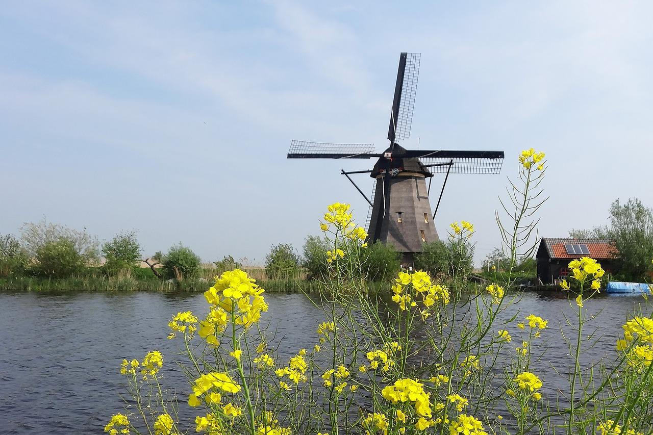 Intalnirea olandeza olandeza)